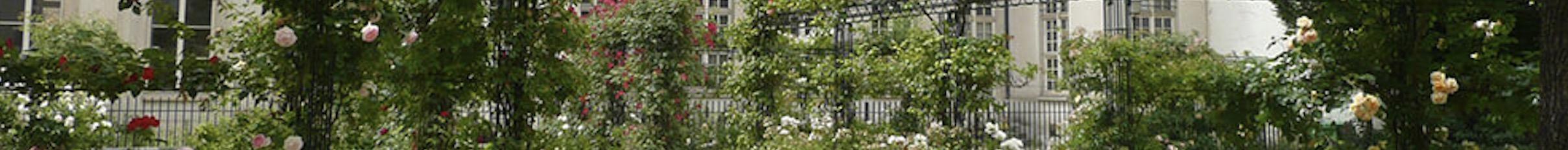Investissement Immobilier locatif à Lille par Synerg'i, gestion de patrimoine Lille Beauvais Nord